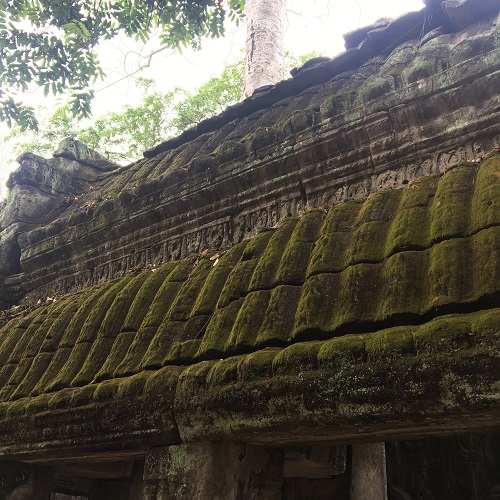 Amazing Cambodia and Thailand Trip - Ta Prohm Siem Reap