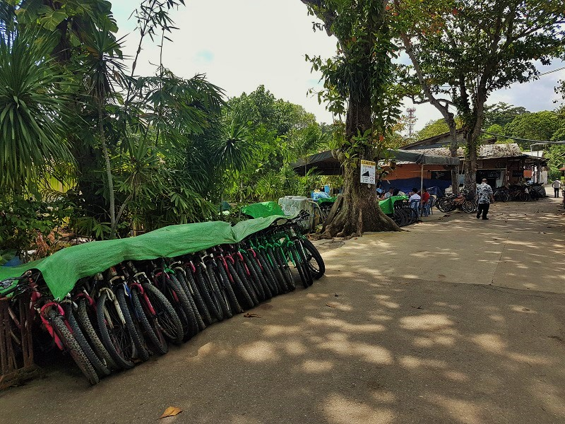 Bike Rental Shops in Pulau Ubin