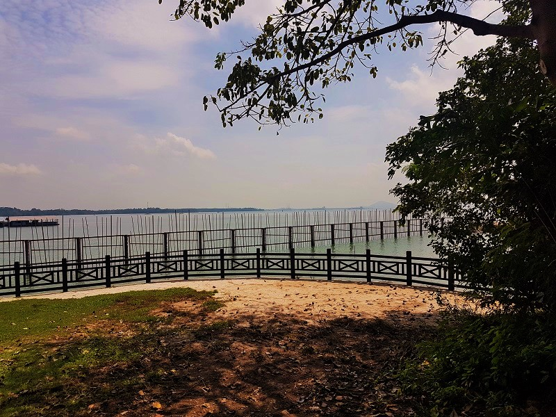 Camping Location in Mamam Campsite - Detailed Guide to Pulau Ubin