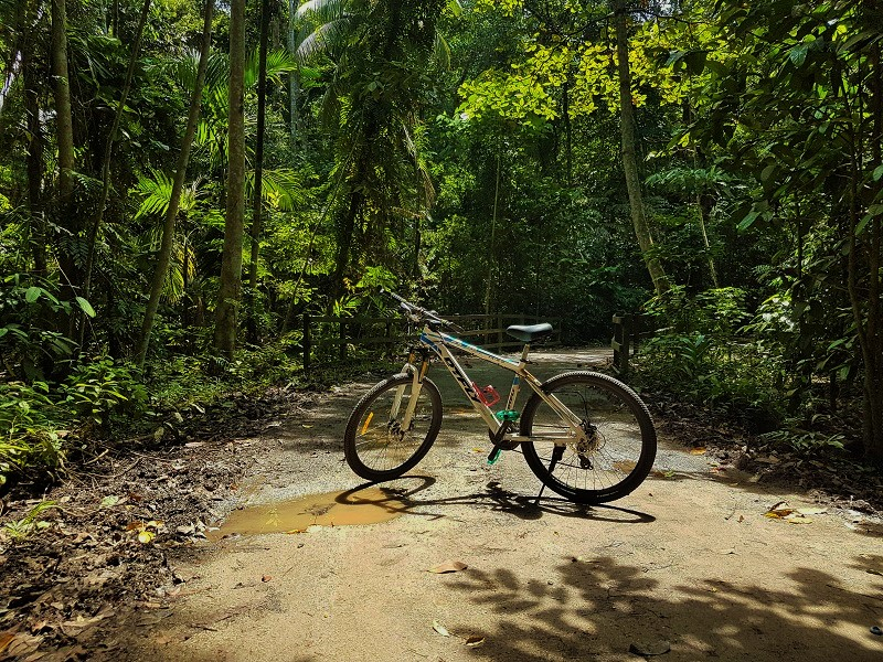 Cycling in Chek Jawa Wetlands - Detailed Guide to Pulau Ubin