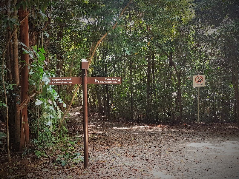 Pathways at Chek Jawa Wetlands - Detailed Guide to Pulau Ubin