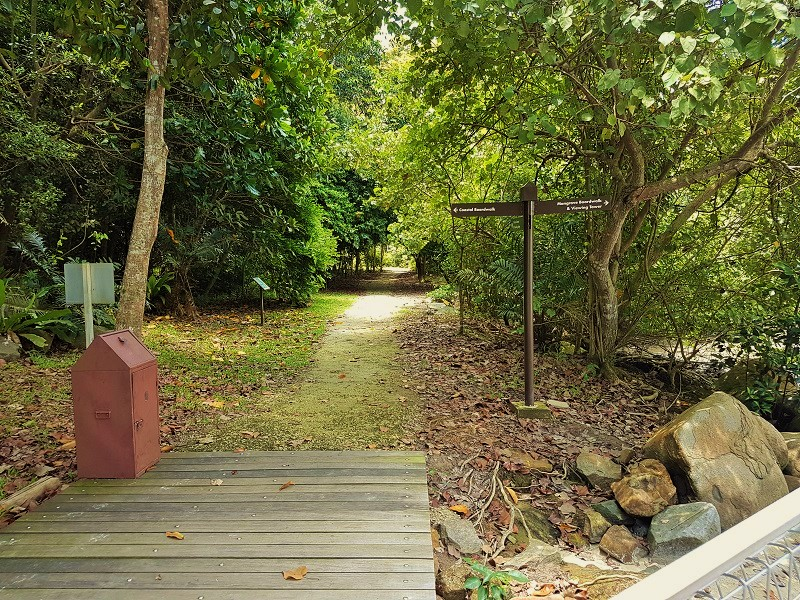Way to go Mangrove Broad Walk - Detailed Guide to Pulau Ubin Singapore