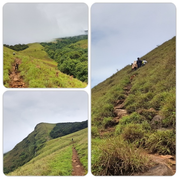 Final ascent at Kudremukh Peak - Kudremukh Trek