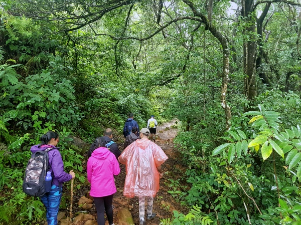 Kudremukh Start Trail - Kudremukh Trek
